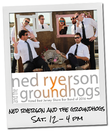 ned ryerson and the groundhogs